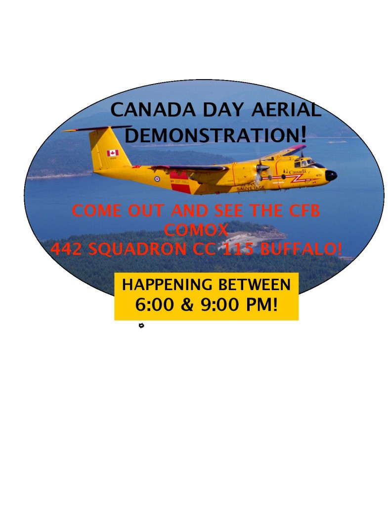 2014 Airshow Flyer 3-page-001